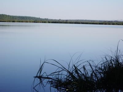 Lagoa Dourada, parcialmente fora do território nos dias de hoje.