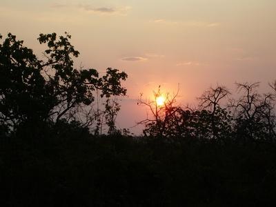 Pôr do sol em meio ao cerrado, bioma predominante na região do território da Pontinha.