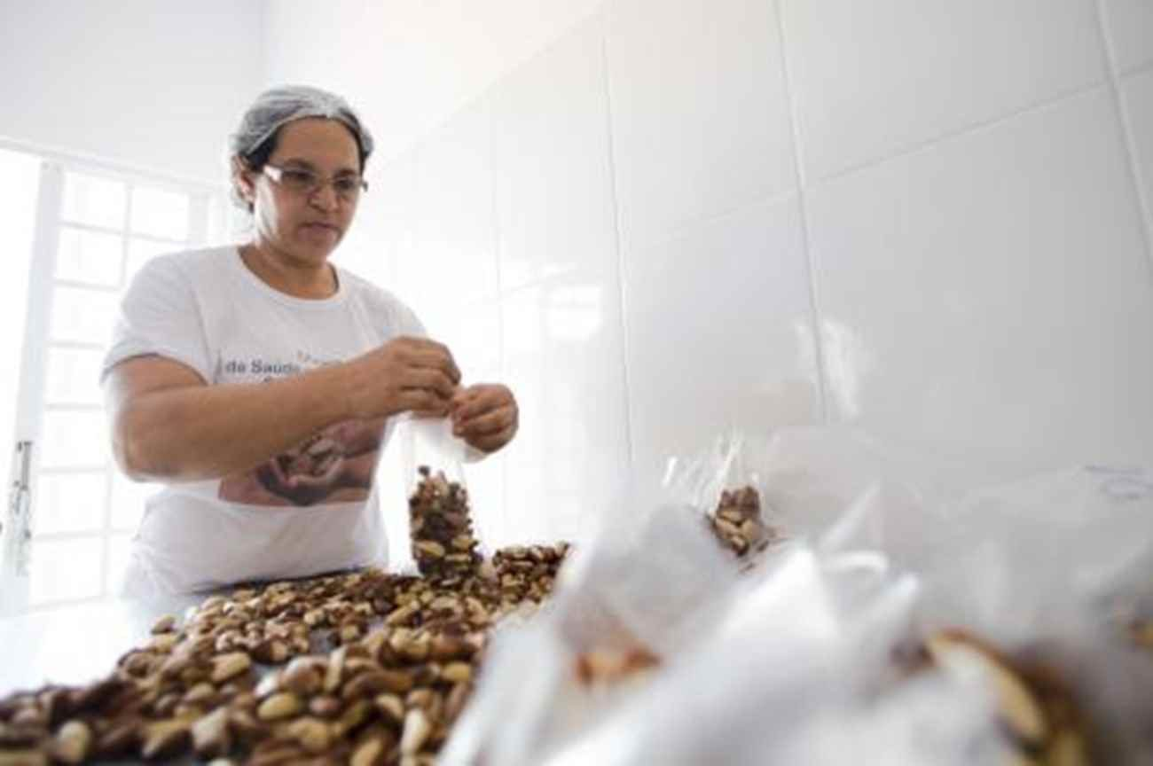 Mulheres são maioria no trabalho com a castanha na COOPAVAM - Marcelo Camargo/ Agência Brasil